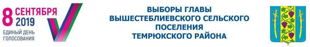 Выборы главы Вышестеблиевского сельского поселения Темрюкского района